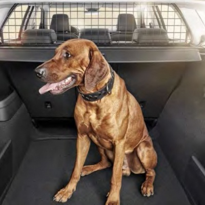 Genuine Skoda Kodiaq Dog/ Luggage Guard