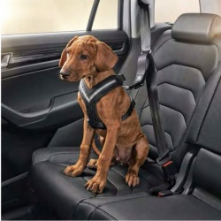 Genuine Skoda Dog Safety Belt/Harness - Size M